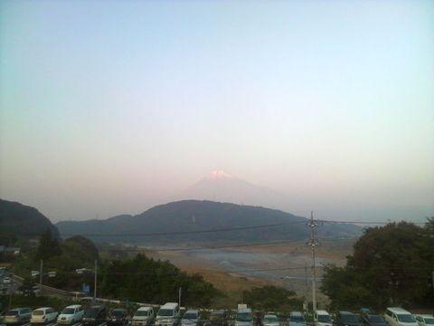 ashitakasa.jpg